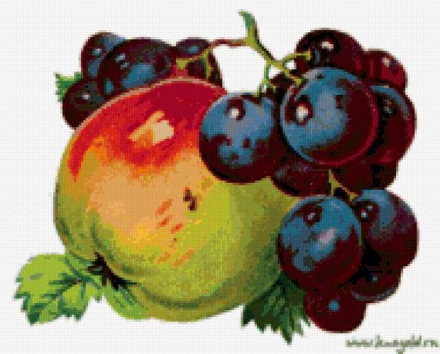 Яблоко и виноград