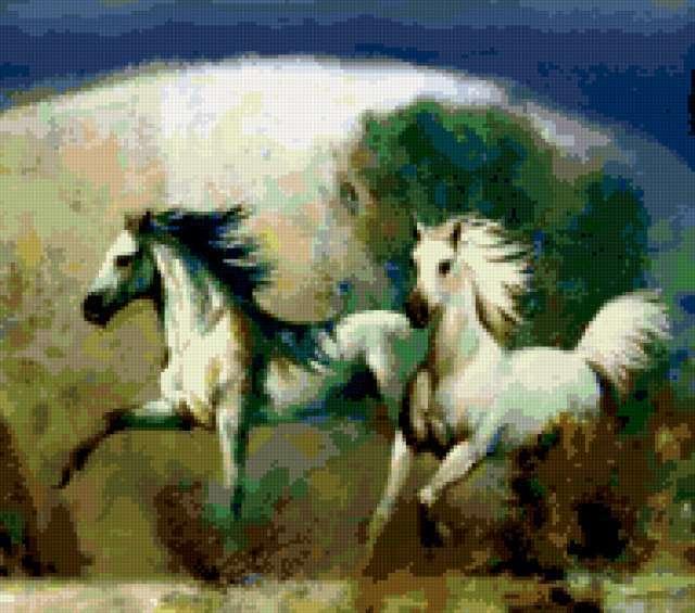 Грация бега, животные
