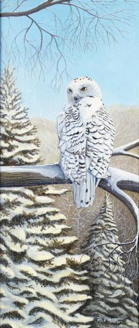 Белая сова, оригинал