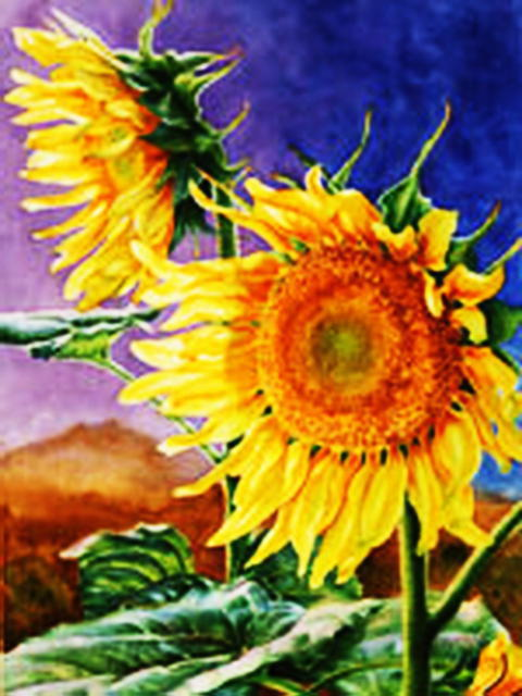 Sunflowers, flowers, decoration, bright, yellow