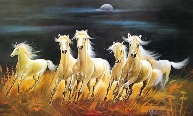 животные, дикие, кони,