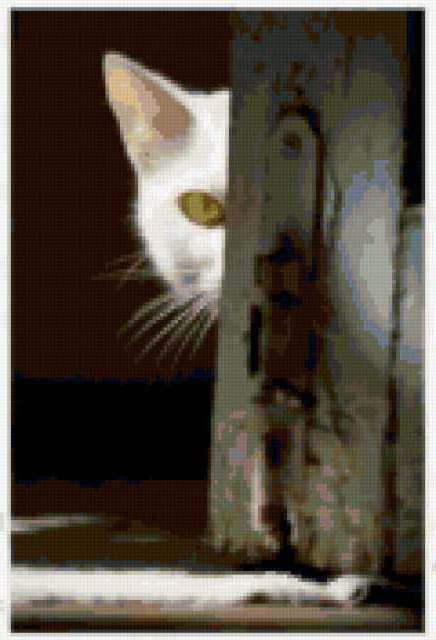 Белый кот, кошки