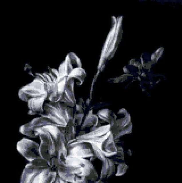 Красивые черно белые картины