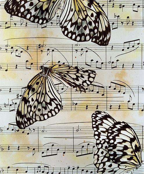 Ноты и бабочки, ноты, бабочки