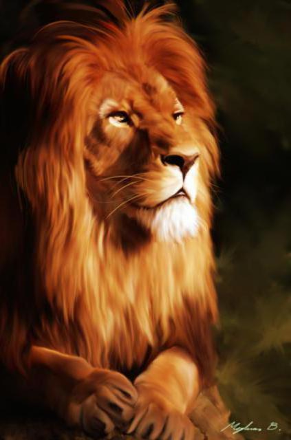 Царь зверей, кошка