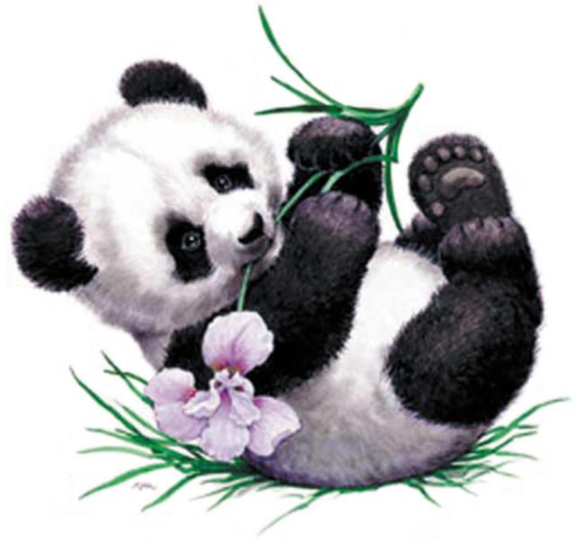 Схема вышивки «Панда малыш»