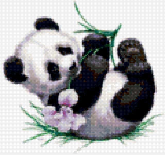 Панда малыш, предпросмотр