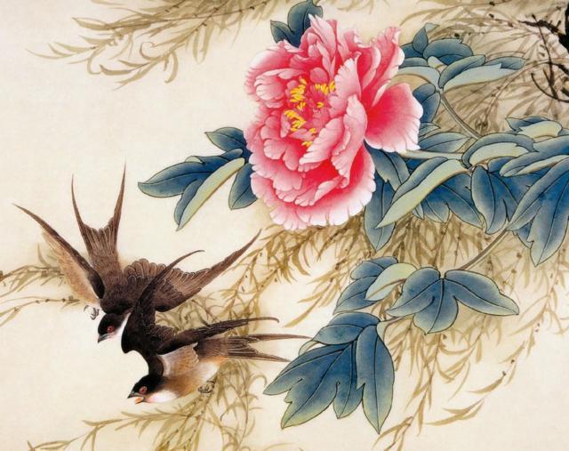 Ласточки и пионы птицы ласточка для
