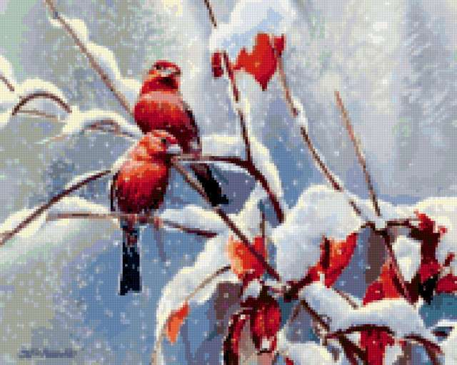 Снегири, зима, снегири, птицы
