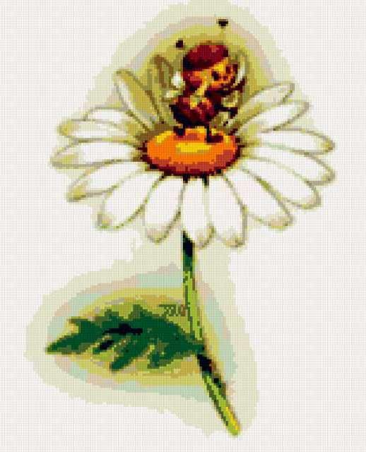 Пчёлка на ромашке