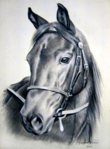 Лошадь,