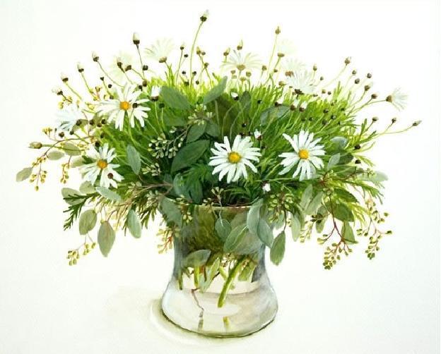 Фуджико ромашки, цветы