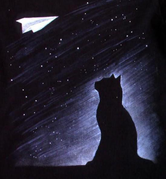 Чёрный кот и чёрная ночь,