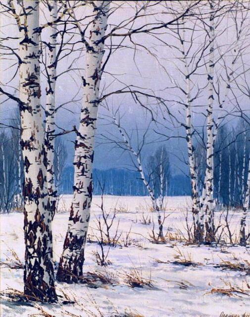 Белые березы, живопись, пейзаж