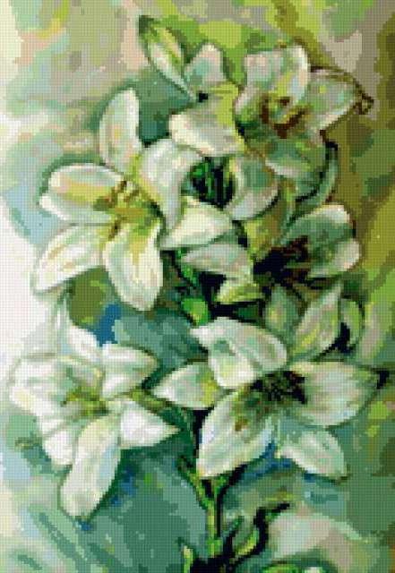 Белые лилии, цветы, орнамент,
