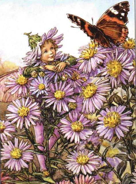 Феи цветов, цветочные феи,
