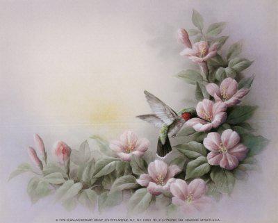Гибискус и колибри, оригинал