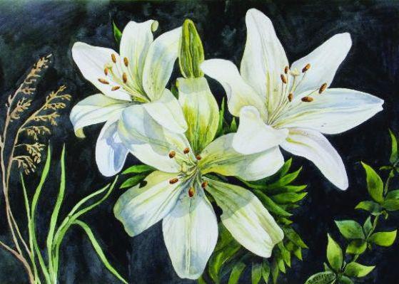 Белые лилии на чёрном,