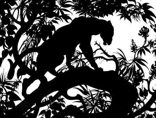 Пантера черно-белая, оригинал