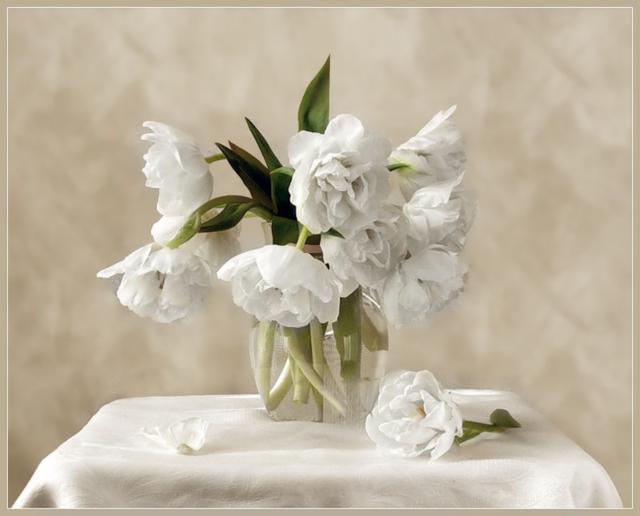 Белые весенние цветы, букет,