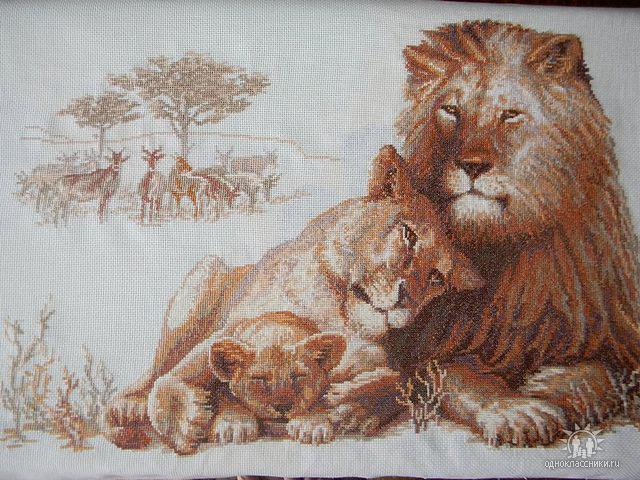 Семейство львов, оригинал