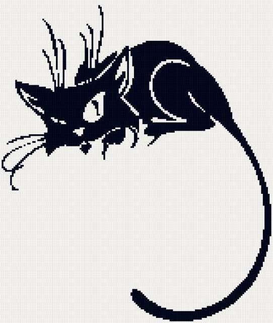 Черная кошка-5, кошка