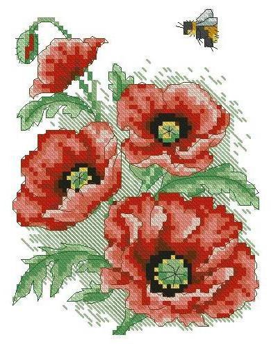 Маки и пчёлка, маки, цветы,