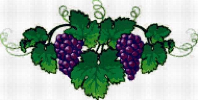 Орнамент из винограда