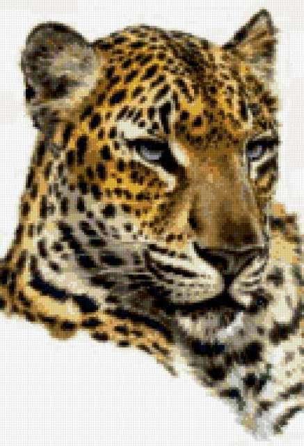 Ягуар, предпросмотр