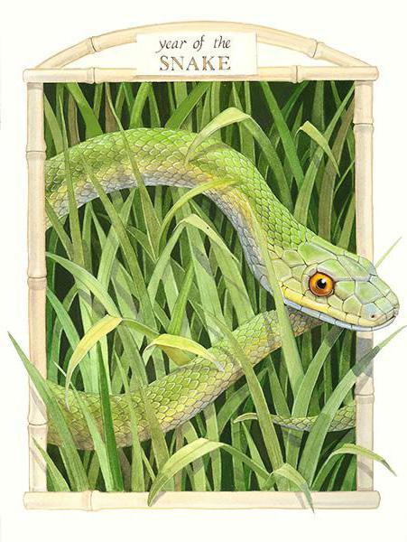 Год змеи, оригинал