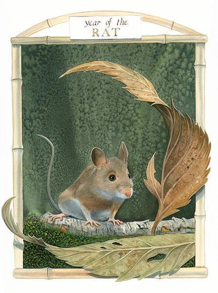Год мыши-крысы, оригинал