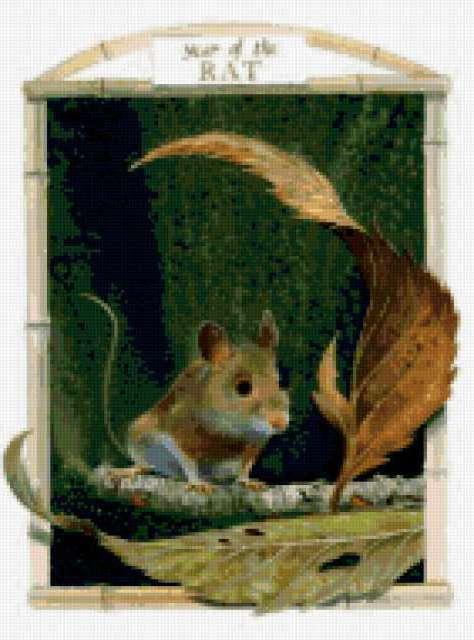 Год мыши-крысы, предпросмотр