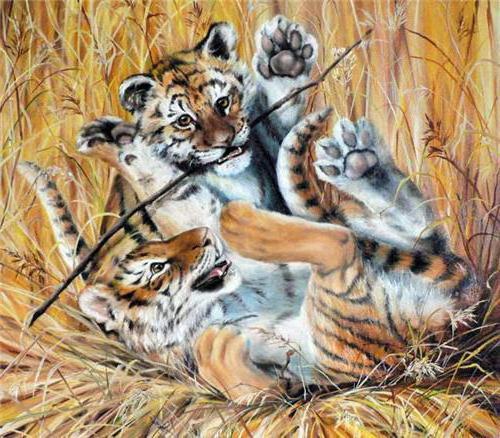 Игра тигрят, оригинал