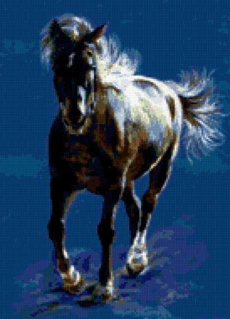 Свободный бег коня