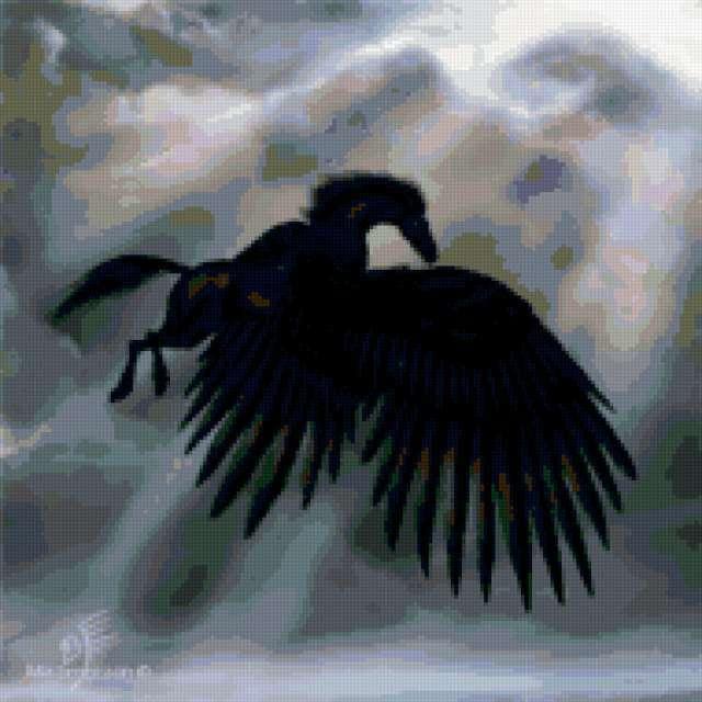 Черный Ворон, предпросмотр