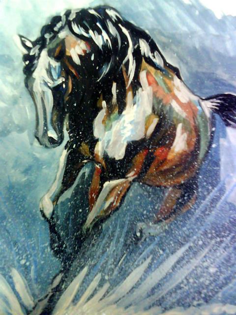 Бег, природа, животные, конь,