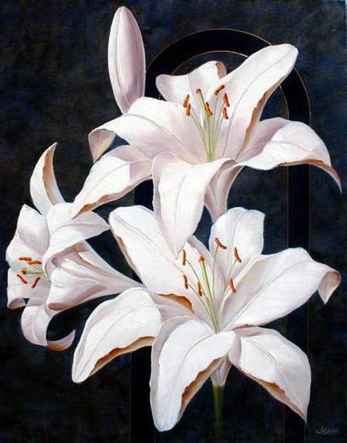 Белые лилии, белые лилии,