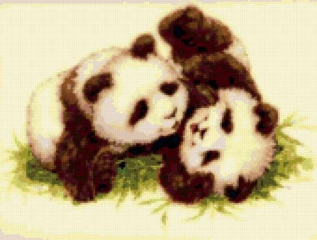 Панды, предпросмотр