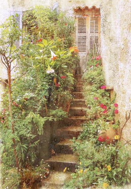 Заросшая лестница, пейзаж
