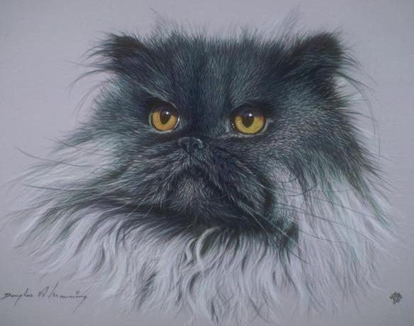 Персидский кот, оригинал