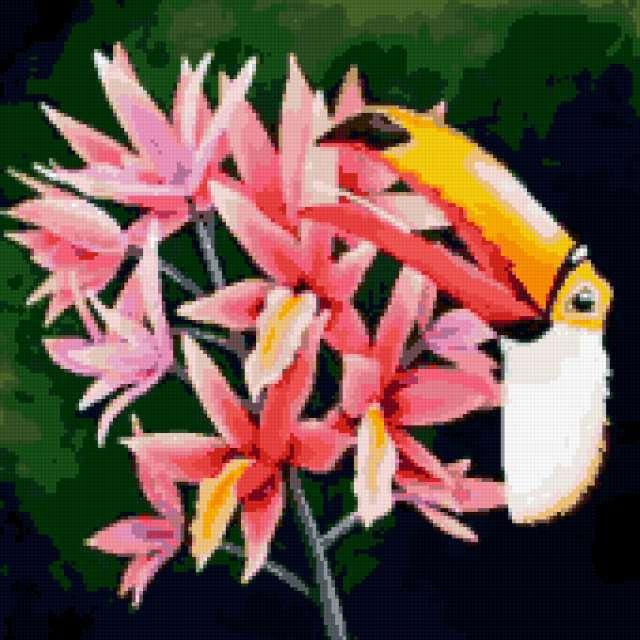 Тукан и цветы, предпросмотр