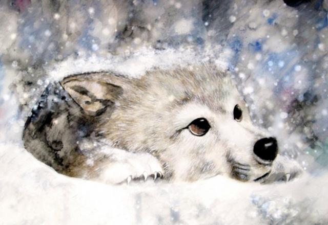 Волк, оригинал