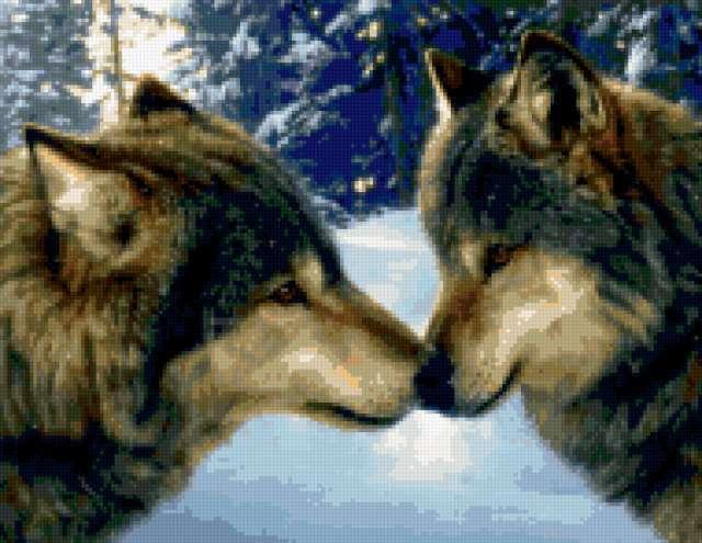 Волки в зимнем лесу, волки,
