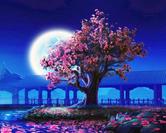 Розовое дерево, кагая, ночь,