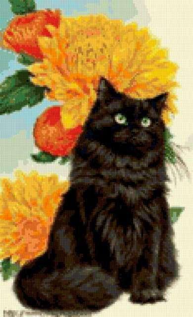 Чёрный кот и жёлтые цветы,