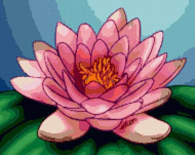 Цветок лотоса, предпросмотр