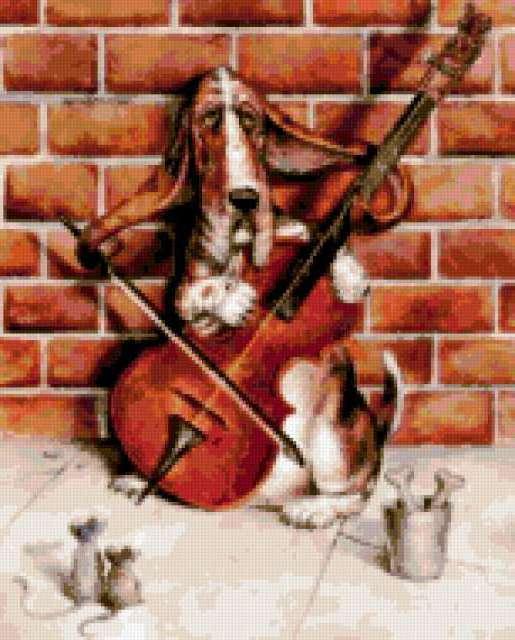 музыка, артист, виолончель