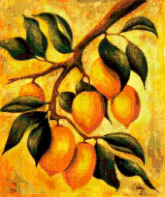 Ветка с лимонами, предпросмотр
