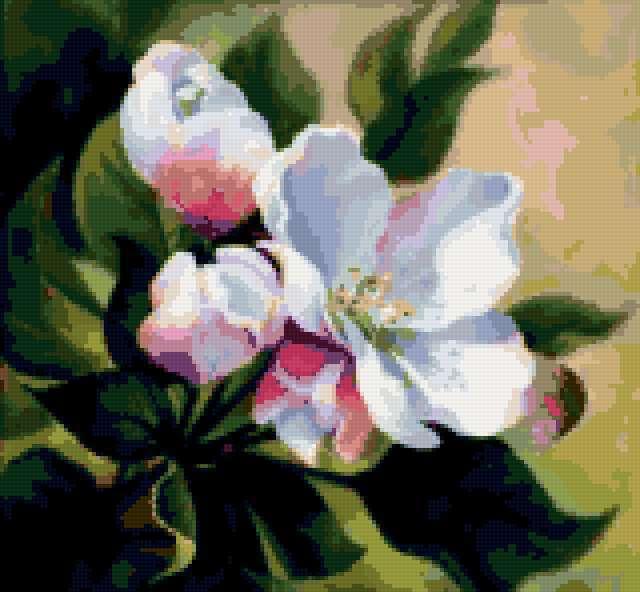 Яблоневый цвет, предпросмотр