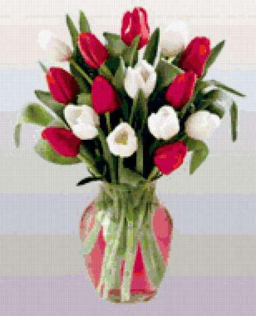 Розовые и белые тюльпаны ,